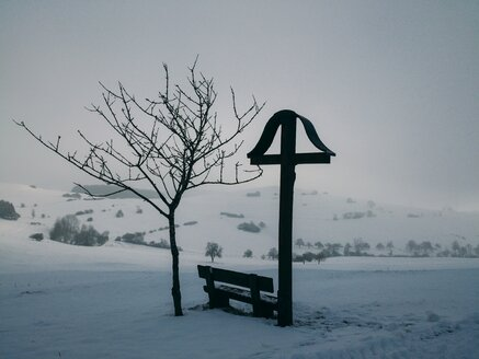 Germany, Constance district, winter landscape with wayside cross - ELF001429