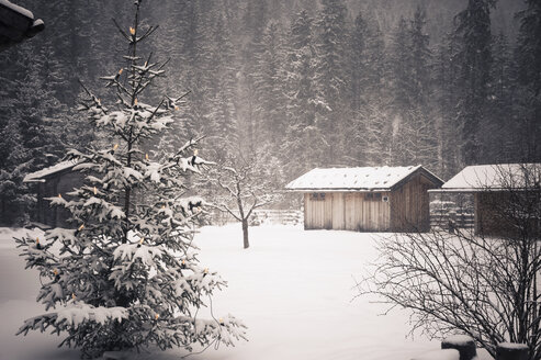 Germany, Bavaria, Berchtesgadener Land, wooden hut in winter landscape - MJF001389