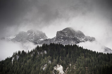 Germany, Bavaria, Ramsau, forest and mountains in clouds - MJF001447