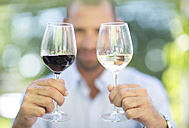 Man comparing white wine and red wine on a wine tasting session - ZEF003214