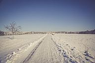 Germany, Kaiserslautern district, Palatinate Forest, winter landscape near Trippstadt - LVF002540