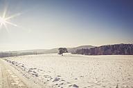 Germany, Kaiserslautern district, Palatinate Forest, winter landscape near Trippstadt - LVF002543