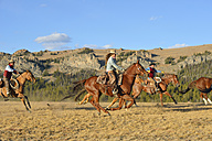 USA, Wyoming, cowboys and cowgirl herding horses in wilderness - RUEF001380