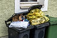 Austria, Linz, full waste bins - EJW000621