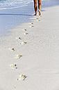 Ecuador, Galapagos Islands, Espanola, tourist walking on beach - FOF007302