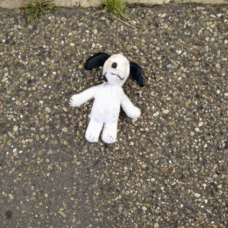 Soft toy on road - SE000845