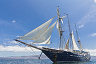 Pacific Ocean, sailing ship under sail at Galapagos Islands - FOF007564