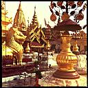 praying, Shwezigon Pagoda, myanmar - LUL000129
