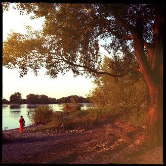 elbe river sunset, near bleckede, niedersachsen, deutschland - LUL000258