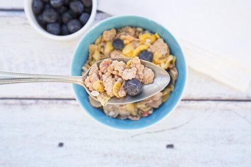 Glutenfree muesli with blueberries - LVF002601