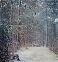 Germany, Wuppertal, forest with crows in winter - DWI000390
