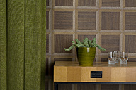 Sideboard with glasses and potted plant in front of wooden wall cladding - PATF000025
