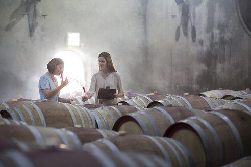 Two women tasting wine in cellar - ZEF004219