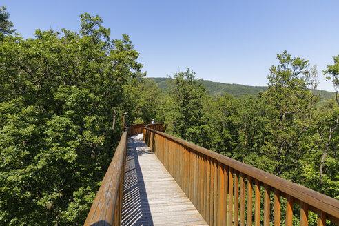 Austria, Burgenland, Geschriebenstein nature park, Althodis treetop walk - SIEF006412