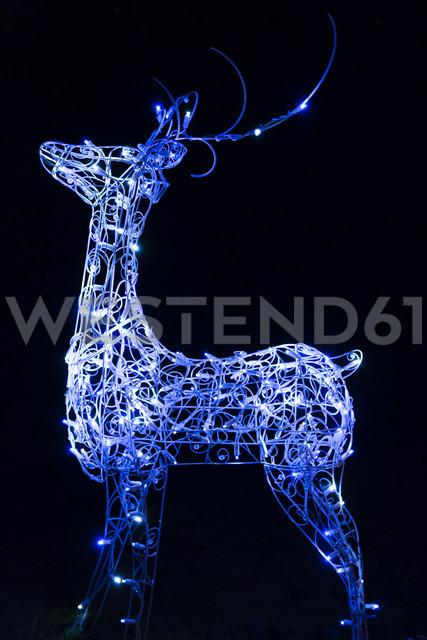Canada, Vancouver, Christmas illuminations, Blue reindeer - NGF000200