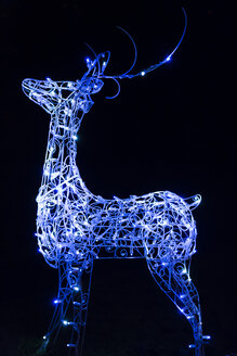 Canada, Vancouver, Christmas illuminations, Blue reindeer - NGF000200