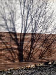 Spain, Catalonia, shadow of tree on house front - JMF000318