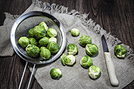 Brussel sprout in colander and knife - SARF001282
