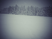 Germany, Black Forest, winter landscape in stormy weather - KRP001263