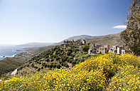 Greece, Vatheia, tower houses and coastal landscape - WWF003508