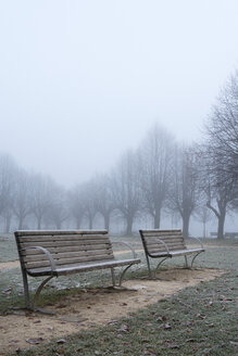 Austria, Mondsee, Autumn fog in park, empty benches - WWF003417