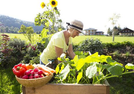 Austria, Mondsee, woman gardening - WWF003632