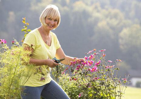 Austria, Mondsee, woman pruning plant in her garden - WWF003639