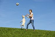 Austria, Mondsee, woman playing with Labrador Retriever on a meadow - WWF003744