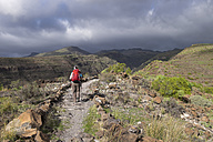 Canary Islands, La Gomera, Alajero, woman walking on hiking trail Sendero Quise - SIEF006440