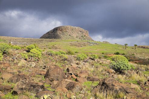 Canary Islands, La Gomera, Alajero, Mount Calvario - SIEF006442