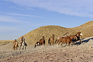 USA, Wyoming, two cowboys herding horses in badlands - RUEF001513