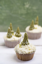 Homemade Christmas cupcakes with fir trees - MYF000947