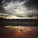 France, Contis-Plage, lake and splash of water, cloudy atmosphere, digitally manipulated - DWI000424