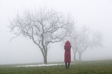 Austria, one teenager standing alone in park, fog - WW003798