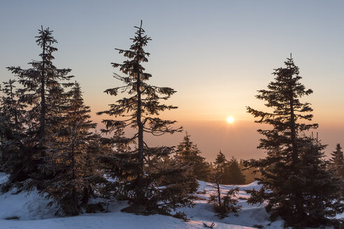Germany, Saxony-Anhalt, Harz National Park, Brocken mountain in winter, sunrise - PVC000273