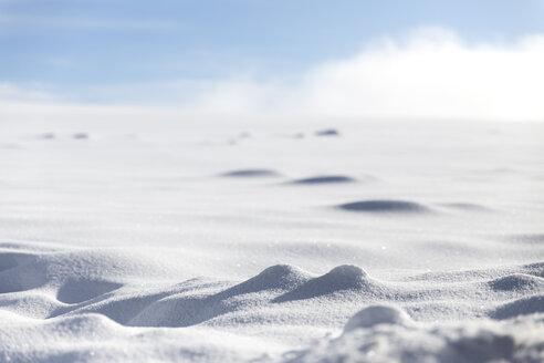 Germany, Baden-Wuerttemberg, Waldshut-Tiengen, snow in sunlight - MIDF000044