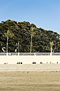 Spain, Andalusia, Cadiz, beach and palm trees - KB000321