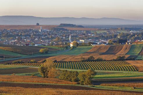 Austria, Burgenland, Oberpullendorf District, Neckenmarkt, in autumn - SIEF006476