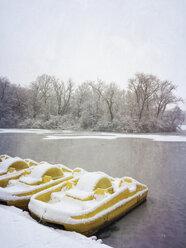Germany, Cologne, winter at Decksteiner Weiher - GWF003764