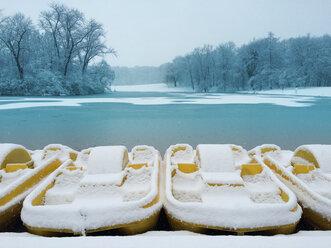 Germany, Cologne, winter at Decksteiner Weiher - GWF003765