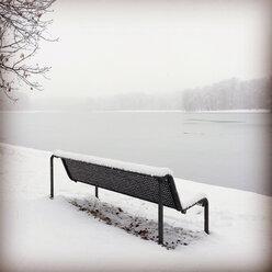 Germany, Cologne, winter at Decksteiner Weiher - GWF003768