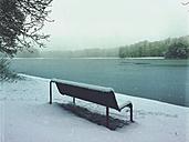 Germany, Cologne, winter at Decksteiner Weiher - GWF003769