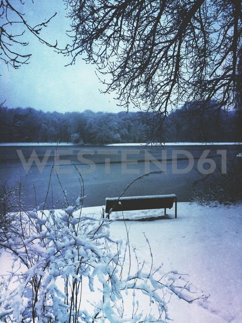 Germany, Cologne, winter at Decksteiner Weiher - GWF003770