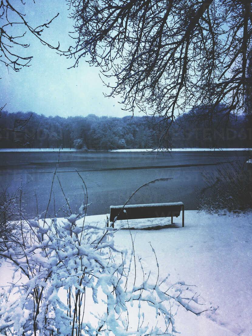 Germany, Cologne, winter at Decksteiner Weiher - GWF003770 - Gaby Wojciech/Westend61