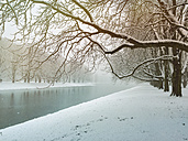 Germany, Cologne, winter at Decksteiner Weiher - GWF003771