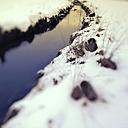 Germany, Bavaria, brook in winter - MAEF009713