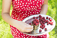 Woman holding metal cup and tray of raspberries - DEGF000133