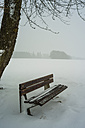 Germany, Swabian Alps, park bench in winter - WGF000610