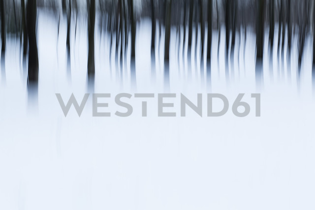 Trees in winter, blurred - AKNF000001