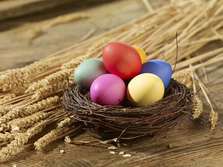 Multicolored Easter eggs on straw - SRSF000576